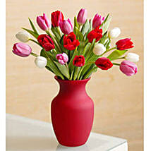 Assorted Tulips: Roses
