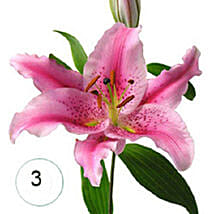 3 Lilies of Affection QAT: Valentine's Day Flowers to Qatar