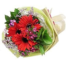 Red Gerbera Bouquet: Father's Day Gift in Sinapore