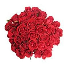 12 Red Roses in Cellophane SA: Gift Delivery in South Africa