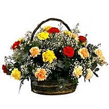 Rainbow Carnation Basket SA: Anniversary Flower Delivery in South Africa
