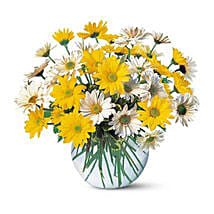 Dashing Daisies: Thank You Flower Delivery in UAE
