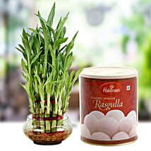 Lucky Tikka with Sweet: Send Lucky Bamboo to UAE
