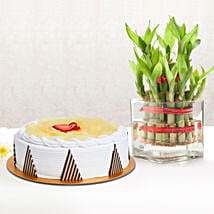 Pineapple Cake and Lucky Bamboo Combo: Mother's Day Plants for UAE