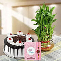 Rakhi with Cake and Plant: Rakhi Delivery in Dubai