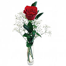 Classic Gift Of Lovesingle Stem Red Rose: Valentines Day Gifts to London