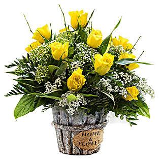 Sunshine Radiance: Friendship Day Flowers UK