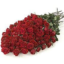 100 Long Stem Red Roses: Send Flowers to Detroit