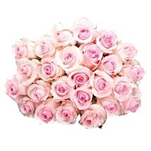 25 Long Stem Pink Roses: Send Flowers to Detroit