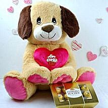 Adorable Puppy N Ferrero Chocolates: Send Gifts to Dallas
