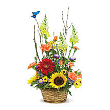 Butterfly Garden USA: Send Flowers to Detroit