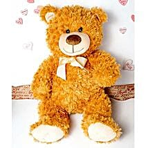 Cute Brown Teddy Bear: Valentine's Day Gifts to Stamford