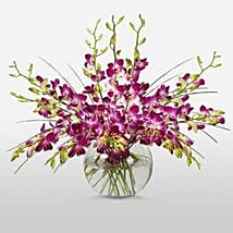 Purple Orchids in Vase: Send Flowers to Detroit
