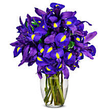 Stunning Blue Iris 10 Stems: Send Mothers Day Gifts to USA