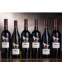 The Best of Talaria Vineyards: Thanks Giving Day Gifts to USA